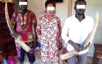 Le Préfet Eugène Nziengui condamné à 45 jours de prison dont 15 avec sursis !