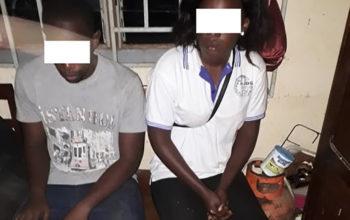 Une jeune femme et son complice risquent dix ans de prison pour trafic d'ivoire