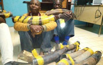 Deux trafiquants appréhendés à Makokou